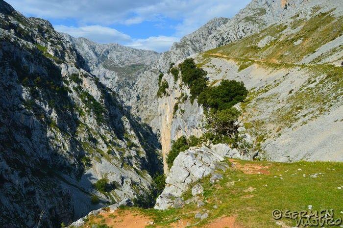 ruta cares asturias