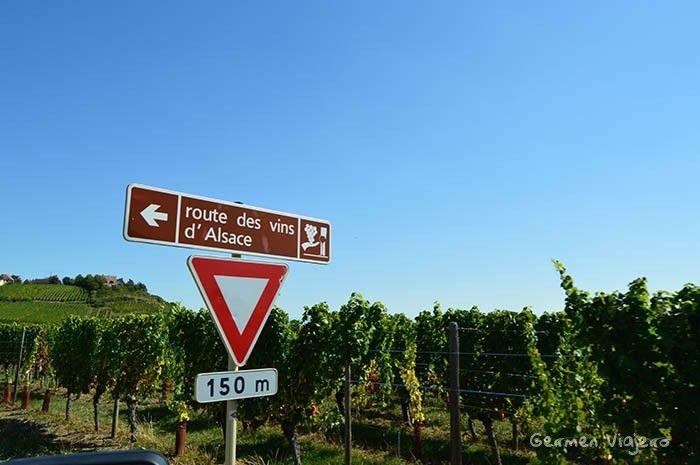 ruta del vino de alsacia